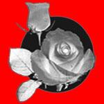 https://www.textiledirectory.com.mm/digital-packages/files/4f2dc955-69f5-4df3-82aa-d008afeae1d4/Logo/Mya%20Gon%20Yaung_D32_logo.jpg